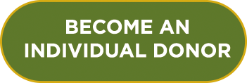 Become an individual donor
